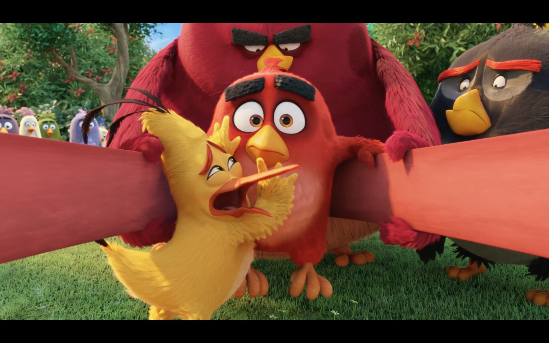 angry-birds3
